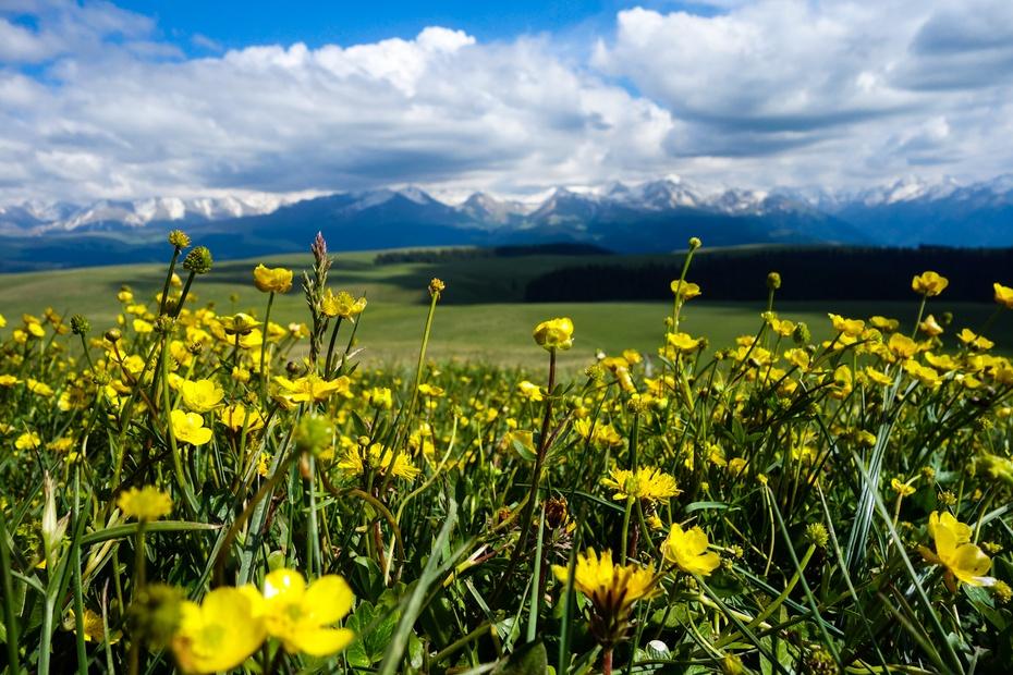 新疆:天山南北好风光 - H哥 - H哥的博客