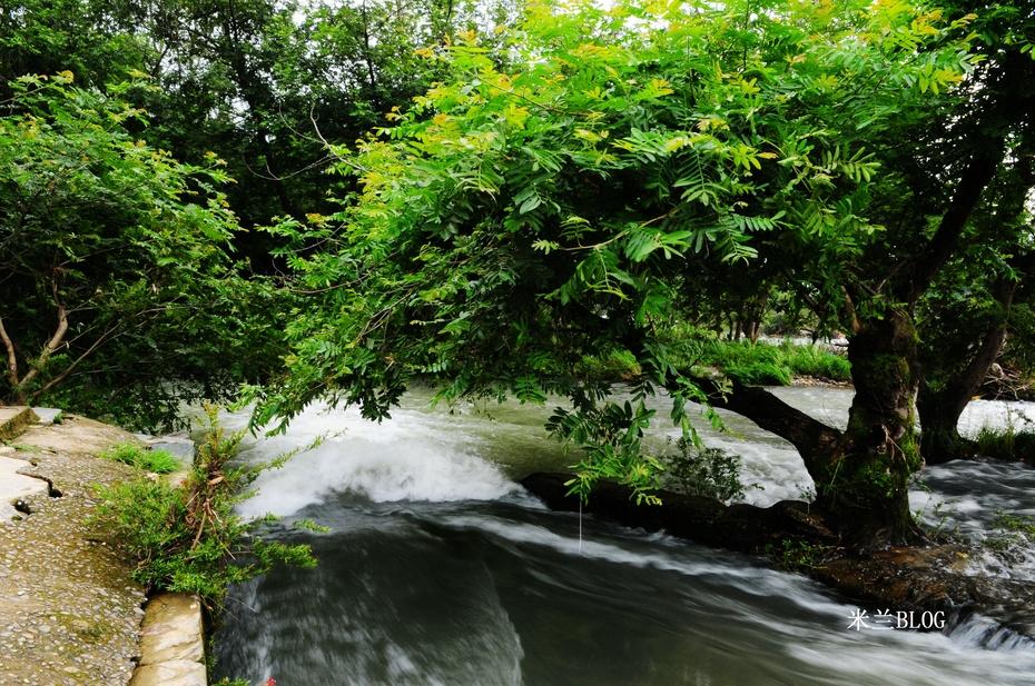 中国最美乡村—端午婺源行(上) - 白狐 - 白狐的博客