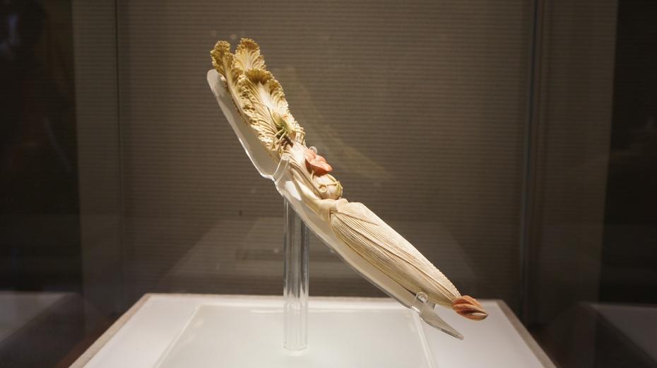 大邑刘氏庄园:那些精美的象牙雕刻等 - 余昌国 - 我的博客