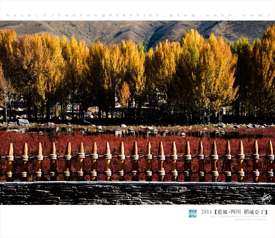 稻城到亚丁的一路美景 - 蓝风 - 蓝风的图像家园