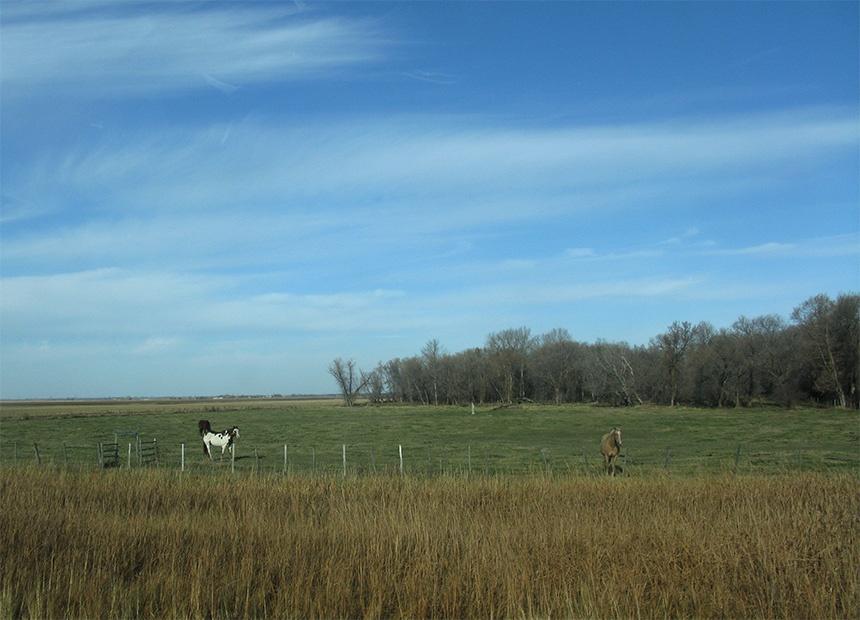 加拿大初冬的原野与牧场 - sihaiyunyou - sihaiyunyou的博客