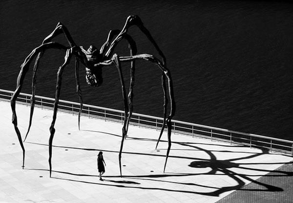 雕塑家路易丝布尔乔亚创造了一个巨型蜘蛛雕塑,这是为了纪念母亲而制作的,雕塑家的母亲是一位纺织工人,她所工作的车间就像是在盘丝洞一样。母亲是伟大的,她爱护着我们蜘蛛吃蚊子,对人类是一种友好的存在,防止传播疾病