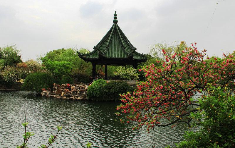 春光烂漫到无锡,层波叠影游蠡园——春游无锡 - H哥 - H哥的博客