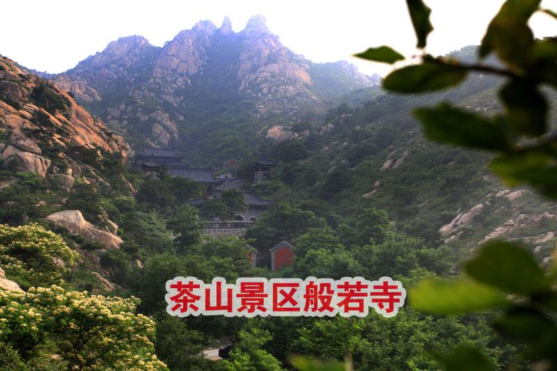 茶山觅踪-记青岛平度茶山风景区-邹平论坛
