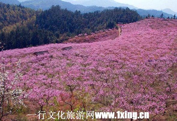 张家港凤凰山风景区-苏南凤凰的空间-搜狐博客