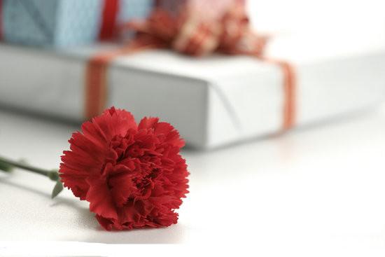 妖精边儿——献给最伟大的母亲母亲节的献礼清单 - heheweilong - 妖精边儿的博客