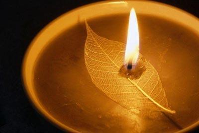 生如夏花之灿烂 死如秋叶之静美 - 月亮弯弯 - 月亮弯弯的博客