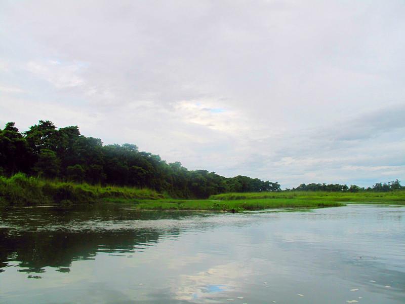 尼泊尔奇旺:感受绿色原生态 - 余昌国 - 我的博客