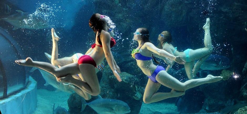 转载俄罗斯美女水下演绎精彩绝技组图