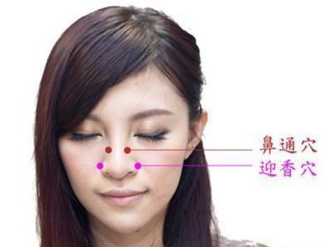 鼻子咽喉解剖结构图解