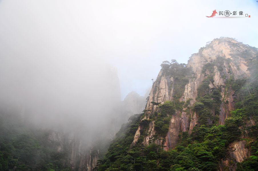 2014年06月03日 - 沉鱼 - 沉鱼雅居
