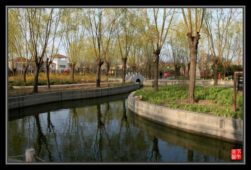 居民小区中的花园----碧海公园 - 下午茶馨 - 下午茶馨展示页