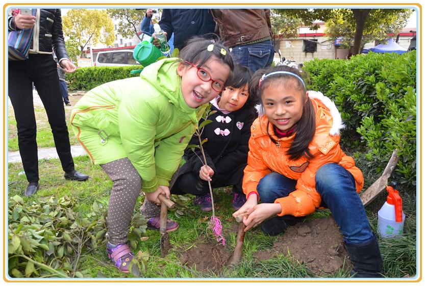保护环境人人有责,植树造林从小做起