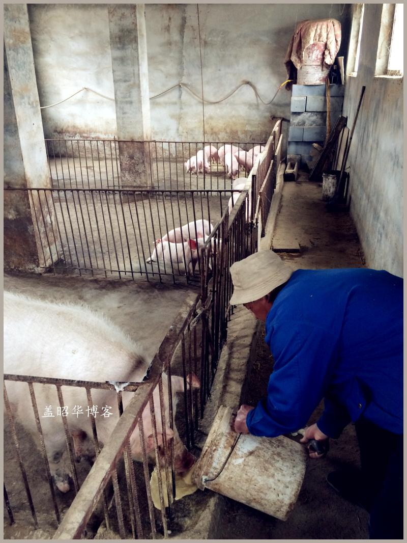 中国被征地农民的困惑 - 盖昭华 - 盖昭华的博客