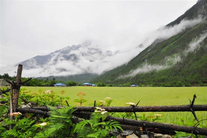 天上的西藏之林芝:惊鸿一瞥南迦巴瓦峰 - H哥 - H哥的博客