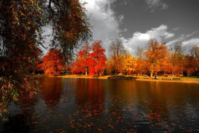 秋色美如画  - 白雪 - 雪之吻
