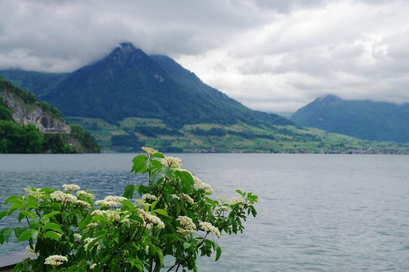 欧洲纪行(十八)——【瑞士】黄昏里的湖边小镇
