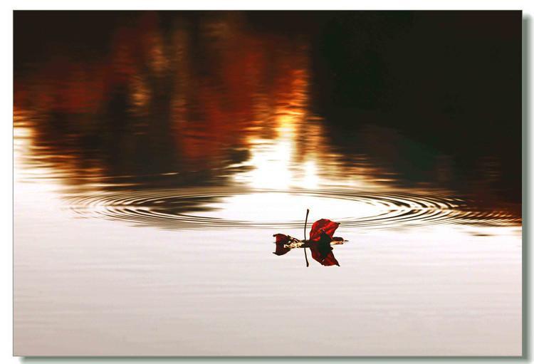 秋色秋韵 - 白雪 - 雪之吻