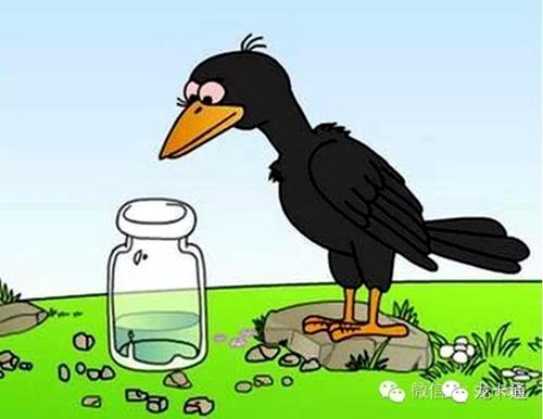 乌鸦喝水的故事后续