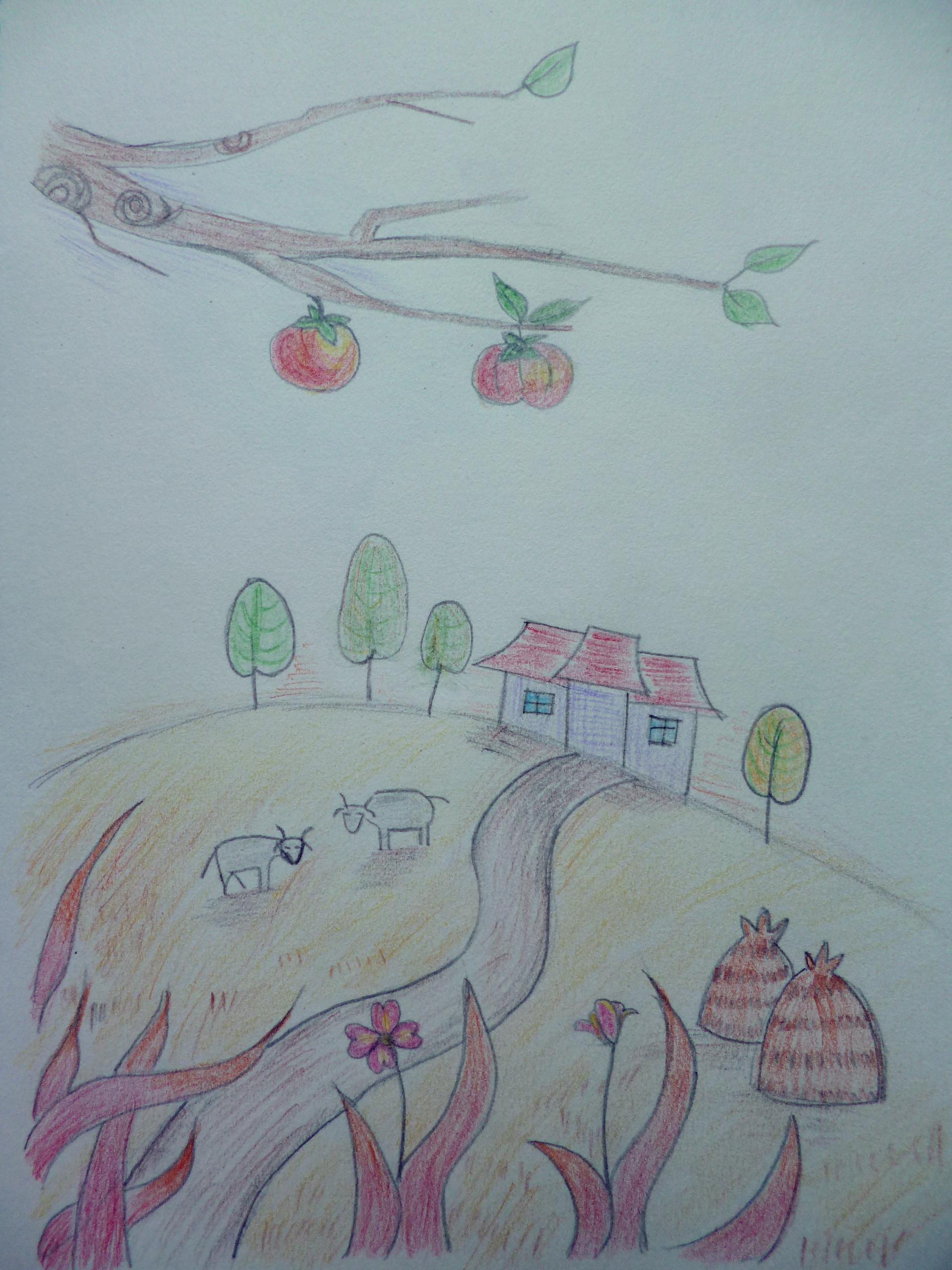 彩铅手绘习作(2)