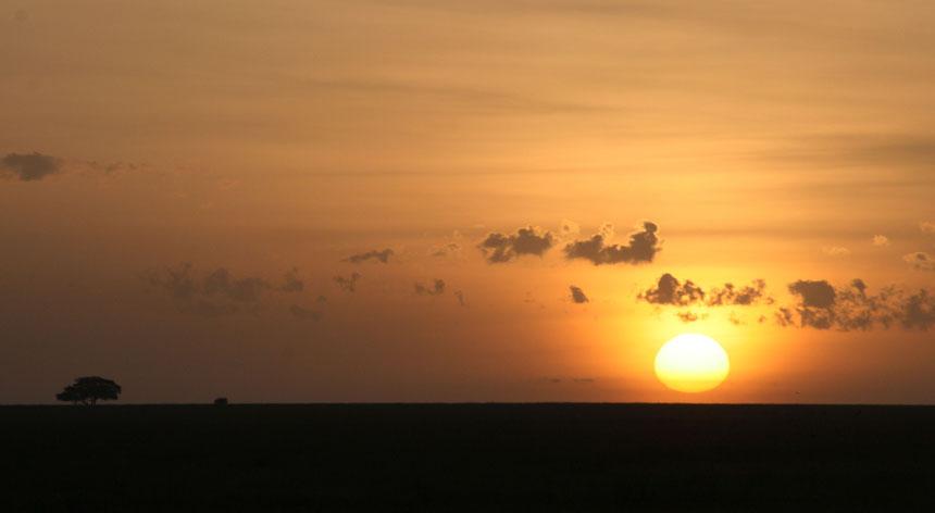 晨光-坦桑尼亚的草原﹑大海﹑高山和狮子 - sihaiyunyou - sihaiyunyou的博客
