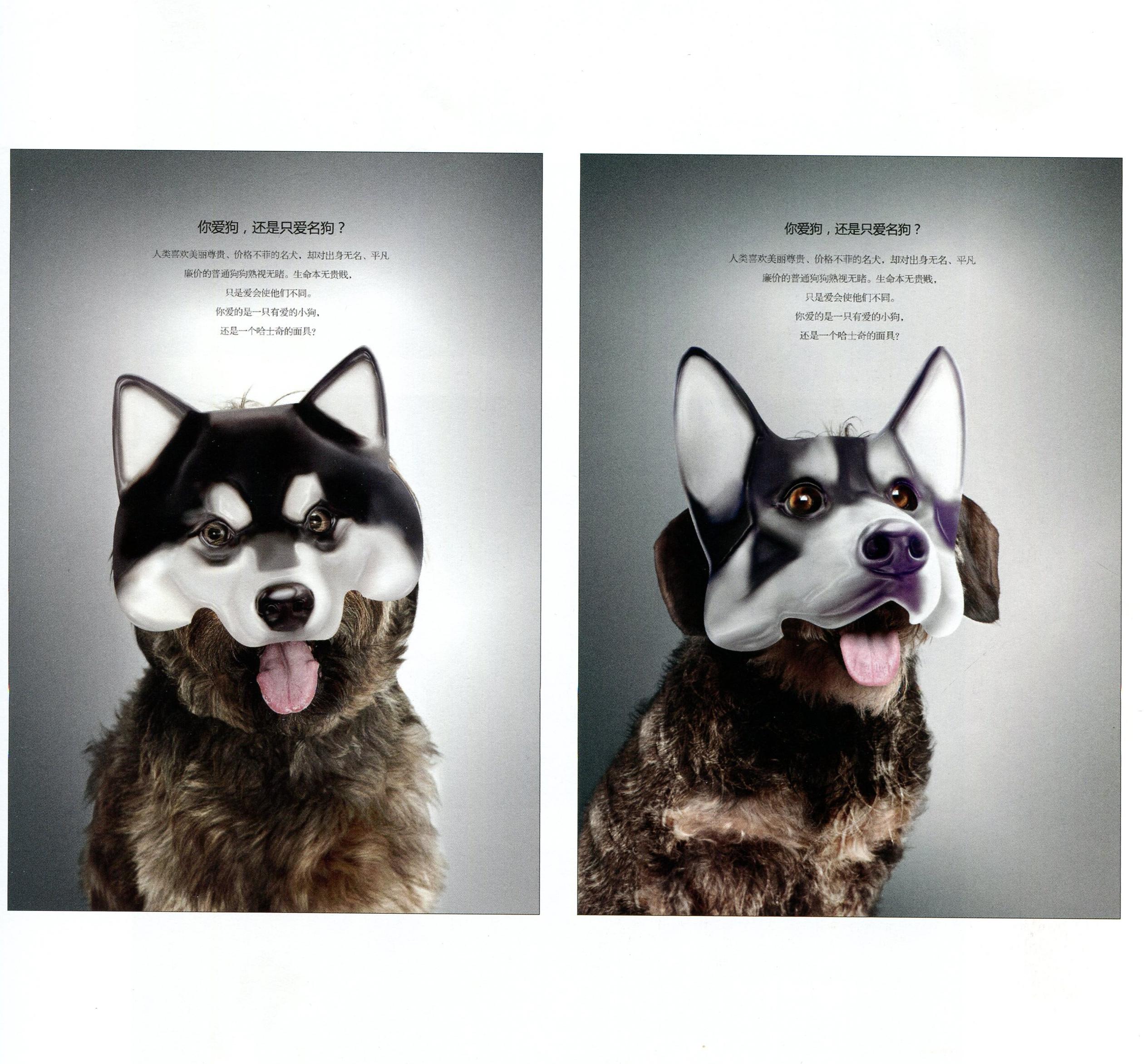 保护动物 《面具篇》