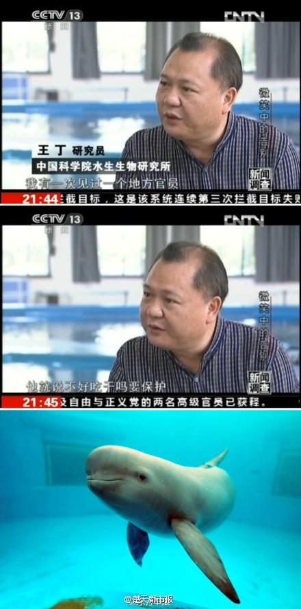 也说:江豚不好吃为何要保护 - 钟茂初 - 钟茂初的博客