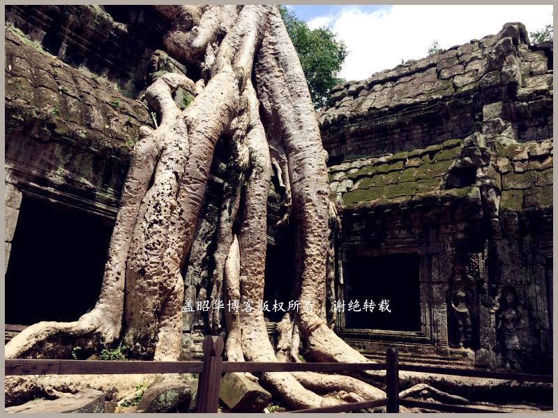 热带雨林里的失落世界 - 盖昭华 - 盖昭华的博客