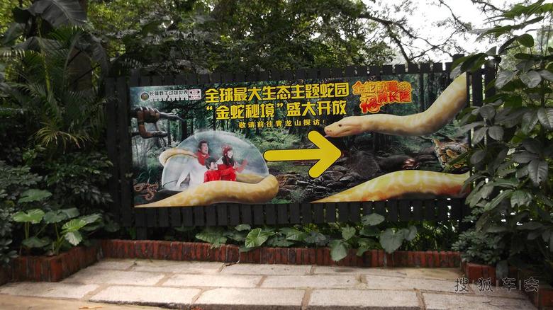 五一劳动节广州长隆野生动物世界自驾游---海量图片