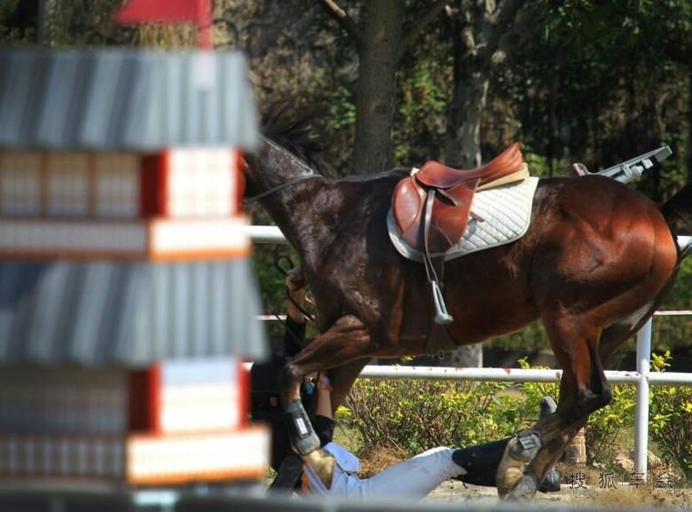 马术障碍赛落马的美女骑士 中国自驾游户外联