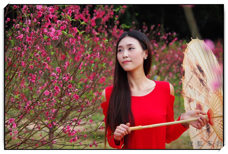 春节前后去桃花林里拍桃花