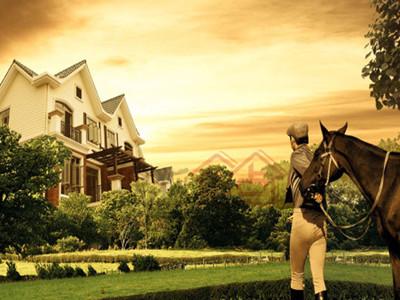 现楼在售430平-450平的双拼别墅,毛坯总价为3300-3500万/套